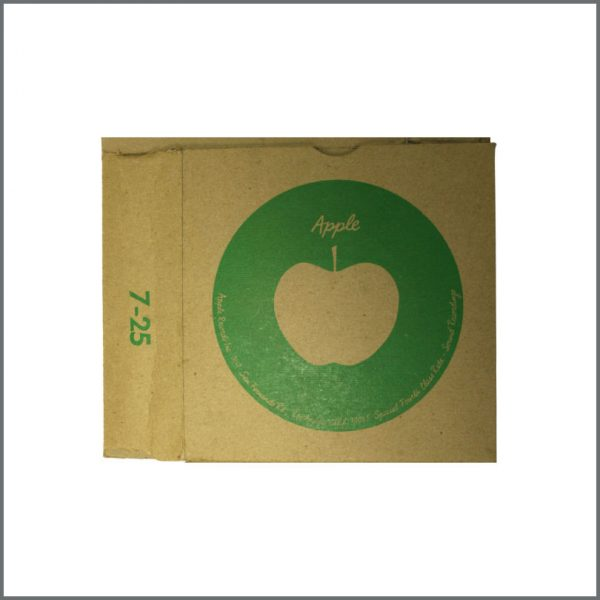B22460 - Original Apple Singles Shipping Box (USA)