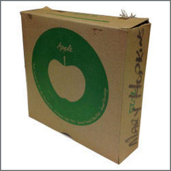 B20738 - Original Apple Singles Shipping Box (USA)
